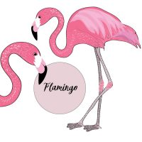 flamingo-isolated-round-text